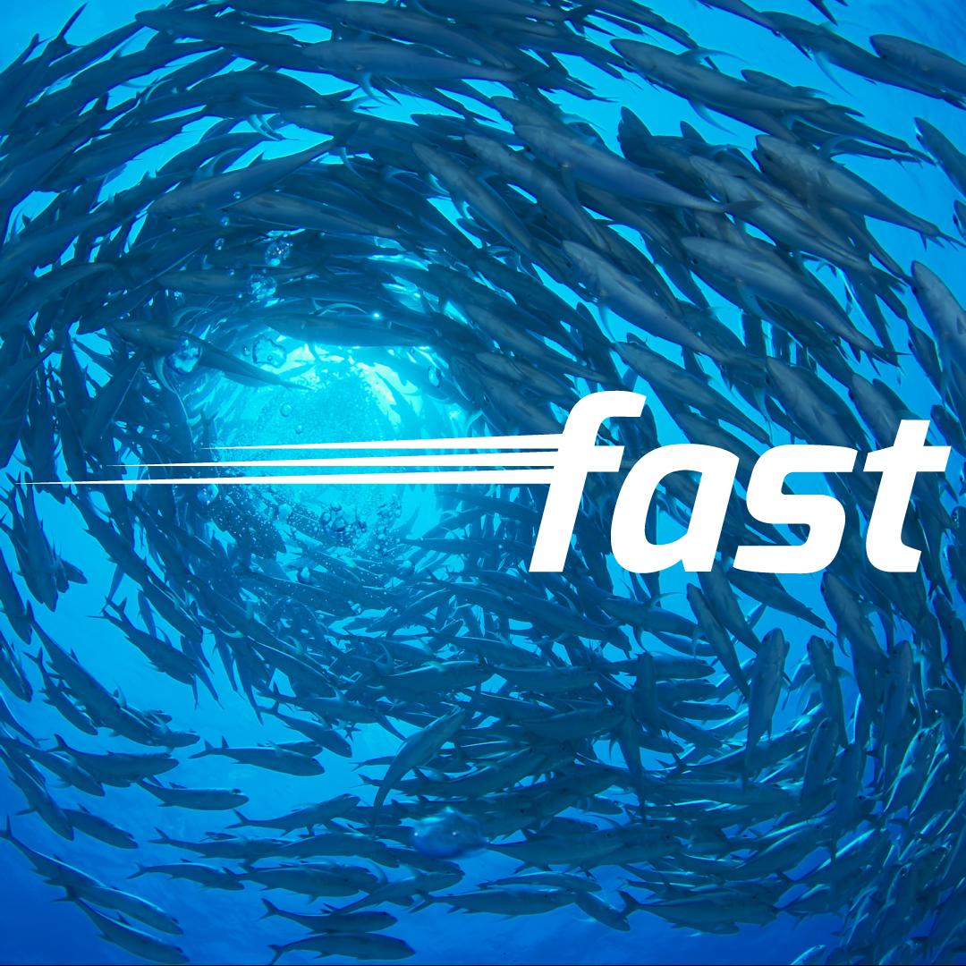 fast_bg